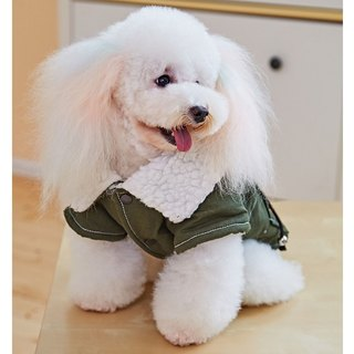 Pet clothes handsome army jacket
