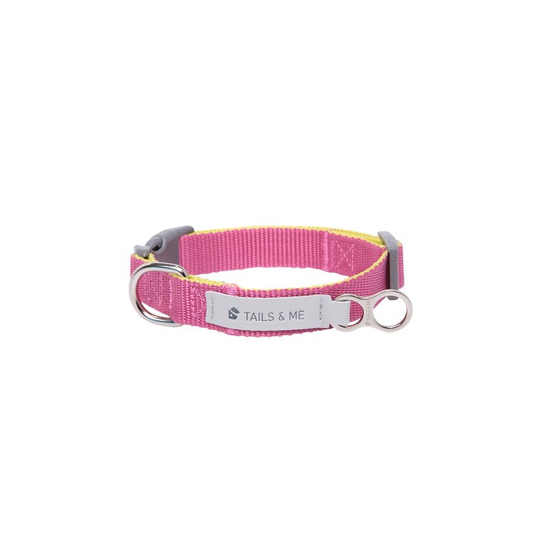 [Tail and me] classic nylon belt collar purple red / lemon yellow L