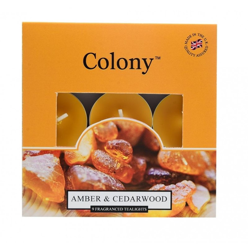 British Candle Colony Series - Amber & Cedar Mini Candles 9 In