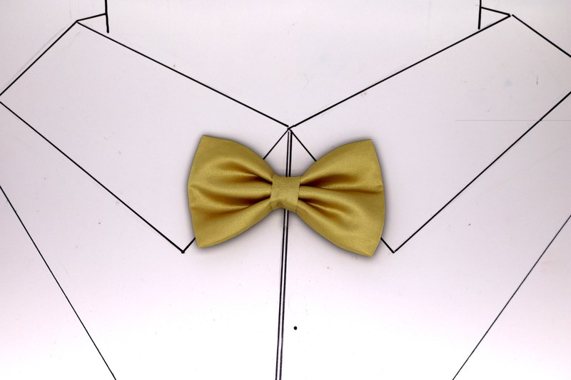 Champagne gold retro seventy percent off tie bow tie bridegroom flowers