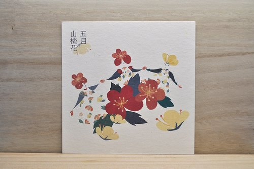 May Birthday Flower language hawthorn flower illustration illustrations postcard postcards