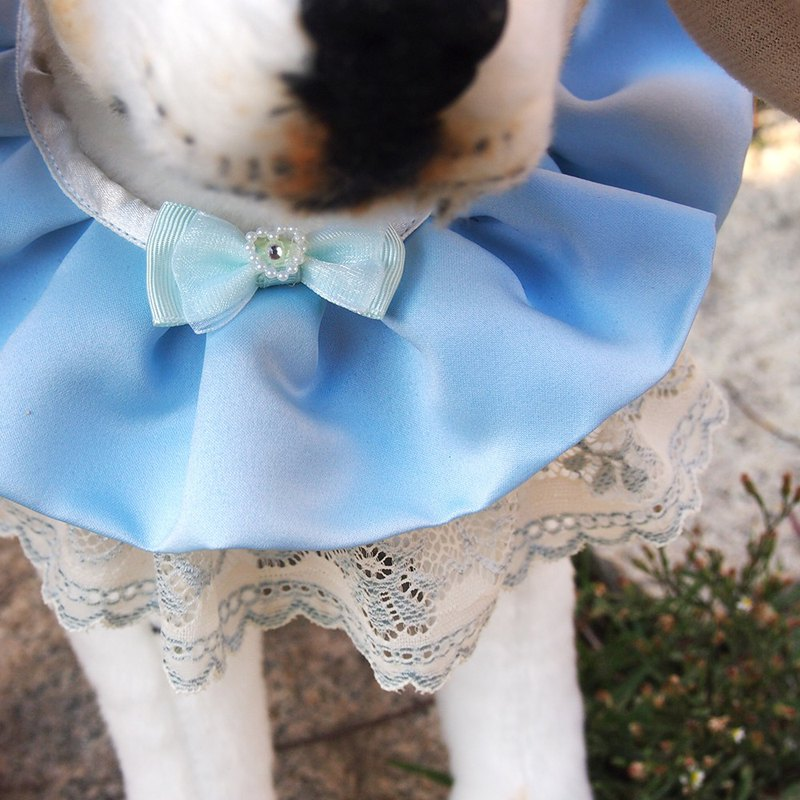 Married pet dog lace collar - light blue