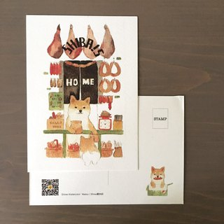 Small Animal Store Postcards Set 12 pcs