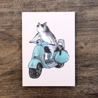Postcard Bike Cat