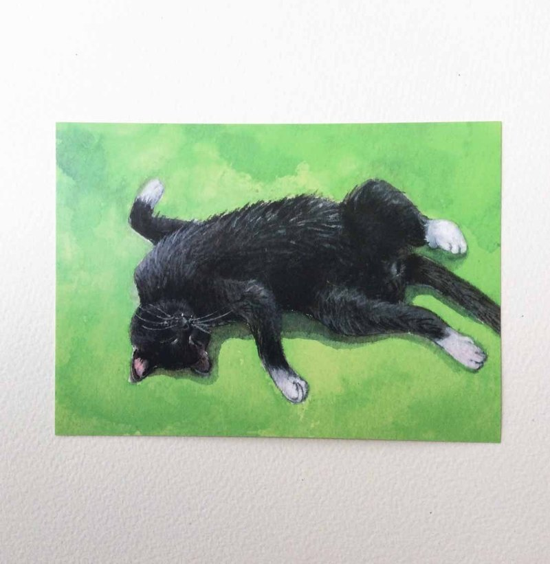 """Mummy Sleeping Series"" hand-painted postcard black cat"