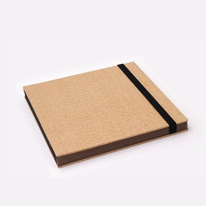 Three summer light years classic solid color strap books section DIY album creative gifts large square (leather)