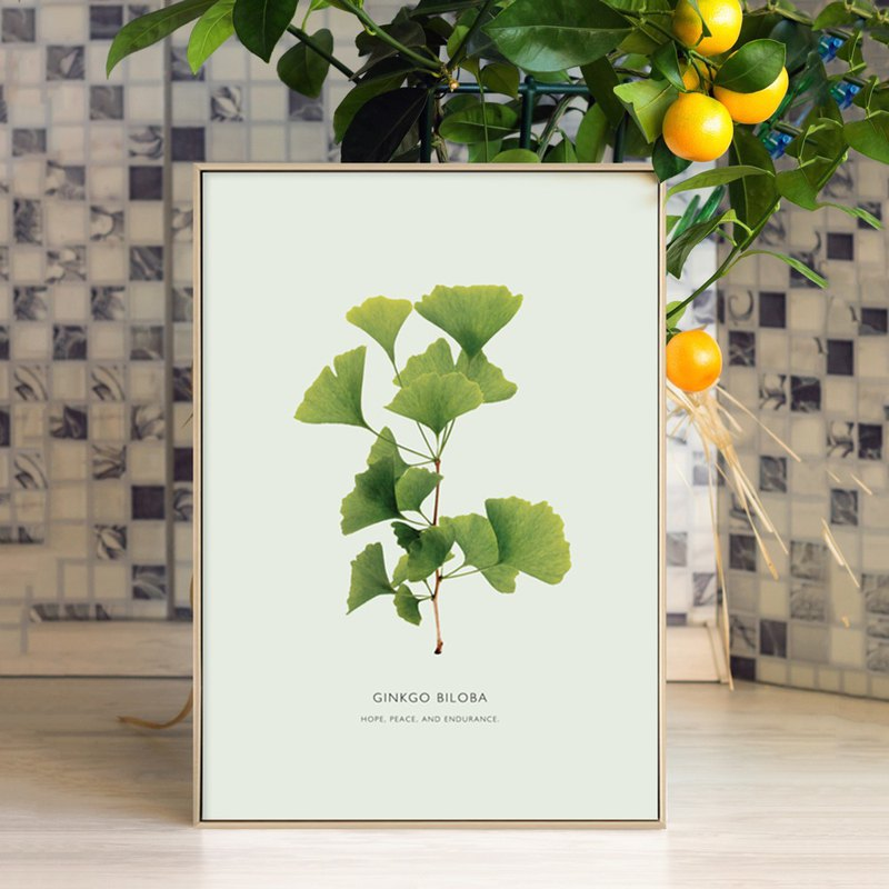 Branch leafy - Ginkgo biloba / hanging painting / green plant / bedroom painting / home / living room layout