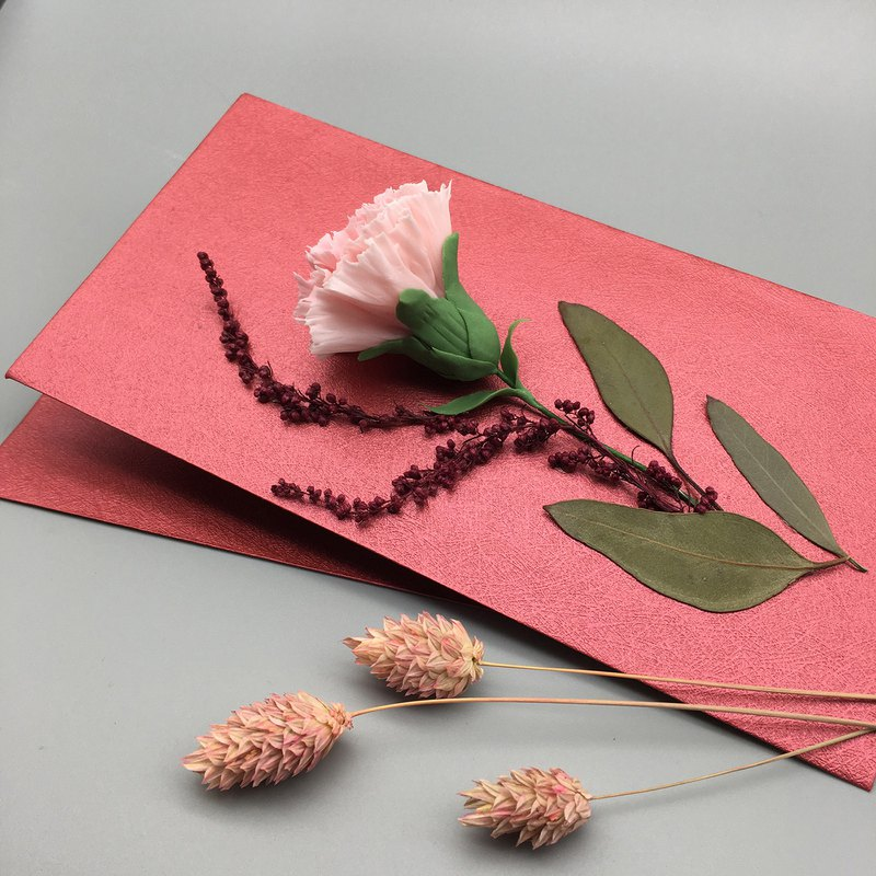 Mother's Day Carnation Gift Bag