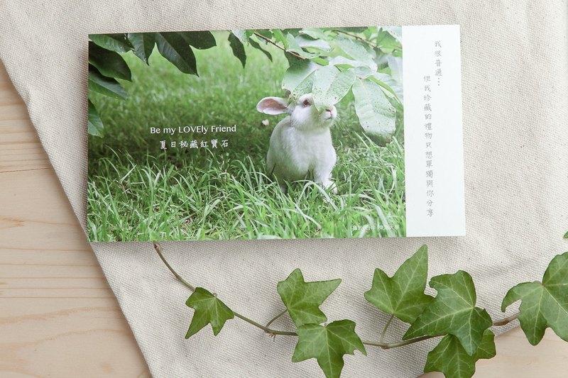 兔子攝影插畫明信片 - 夏日秘藏紅寶石