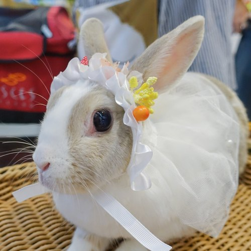 Rabbit flowers romantic wedding veil