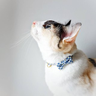: MICKEY : Handmade tiny Bow-tie breakaway cat collar