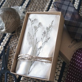 GIFT WRAPPING with crafted paper box (recommend for 2 ties)