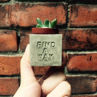 Find a way to find their own way ~! Magnet potted succulents