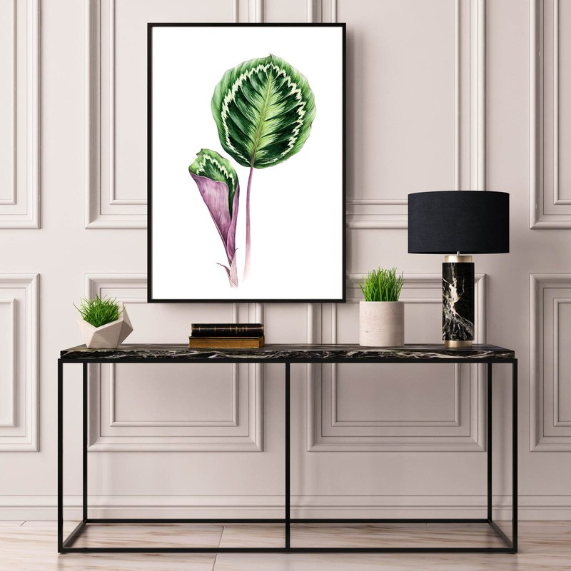【Calathea】Limited Edition Peacock Leaf Art Print | Tropical Rainforest Plant