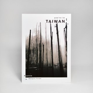 Photography Taiwan Postcard - Nantou Noi Forest (Can post postcards)