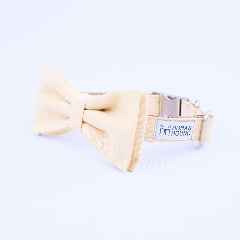 Mustard Collar-Bowtie with Jacket