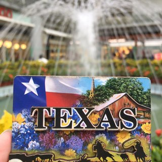Texas TEXAS fridge magnet / magnet