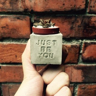 Just be you do it yourself ~! Magnet potted succulents