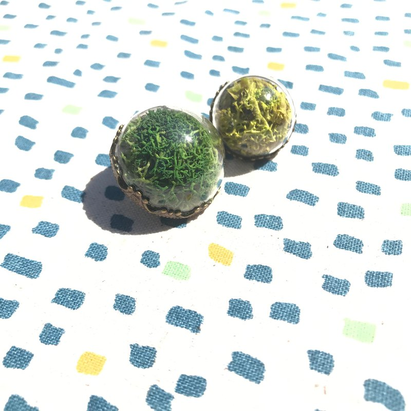 Big Tree Forest Plant Moss Gardening Planting Greenhouse Secrets Stainless Steel Earrings / Glass Forest