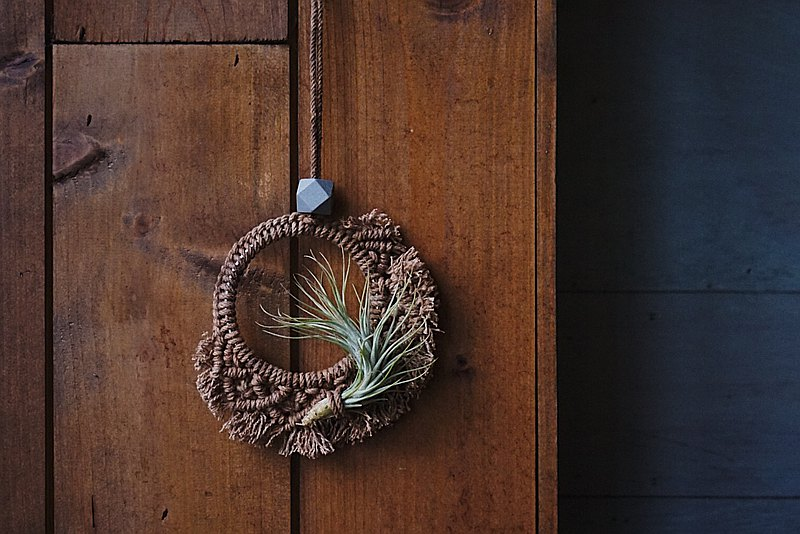 Macrame Air plant Hanging - Persimmon-Dyeing