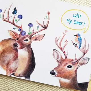 Postcard - a pair of deer
