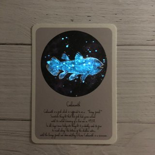Coelacanth starry sky postcard (fluorescent)
