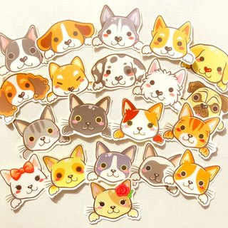 Cats and Dogs Stickers - 20 Pieces - Animal Stickers, Pet Stickers