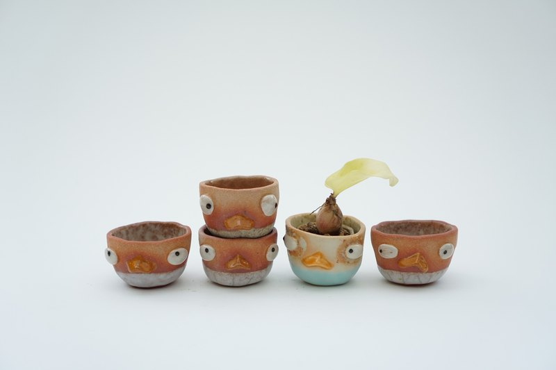 Little duck , little pot , cactus , handmade ceramics