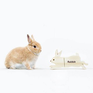 CUSTOMIZABLE Wooden Animal USB Flash drive - Rabbit