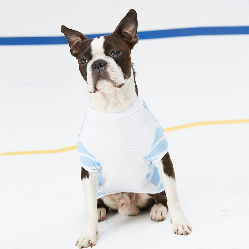 Shaped piping pocket pet clothes - wide version