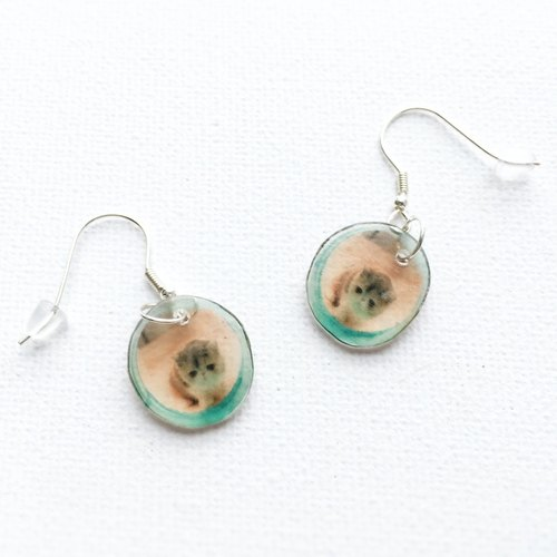 Exotic Cat in a tunnel Jojo 925 silver  earrings