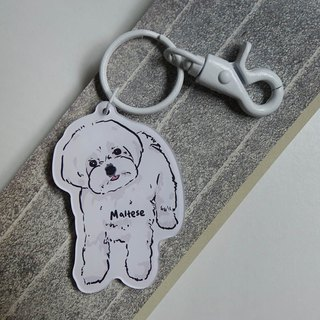 Marzis key ring