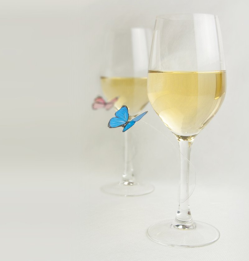 SOCIAL BUTTERFLY - reusable party charms | wine markers - set of 12 pcs