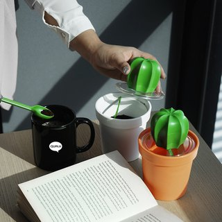 [New] QUALY cactus coffee pot
