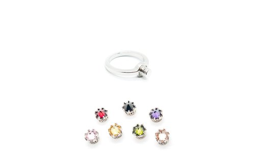 PRINCESS DESIGN SMALL CROWN INTERCHANGEABLE RING