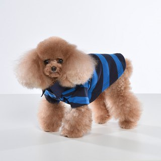 Shirt collar bicolor gradient striped pet clothes