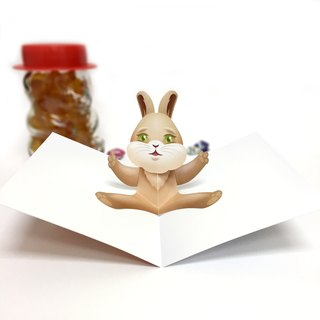 Rabbit Card | Bunny Card | Rabbit Birthday Card | Rabbit Pop Up Card | Pop Up