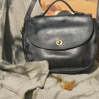 Leather bag _B010
