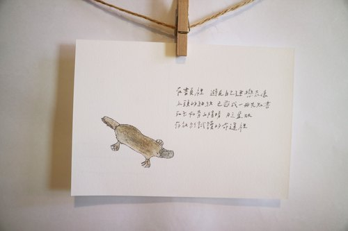 Animals with its poem 58 / platypus / hand painted / card postcard