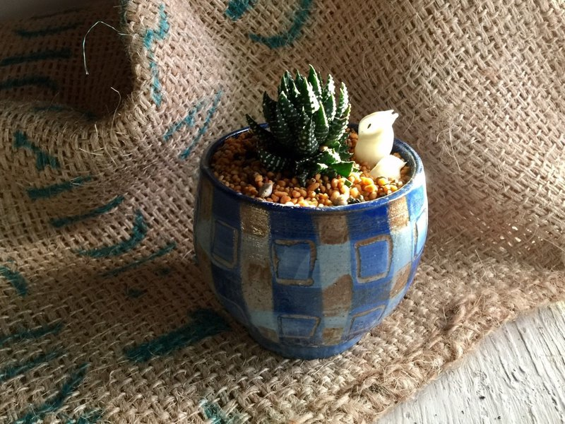 Blue plaid cup type potted pottery_pottery potted potted plant