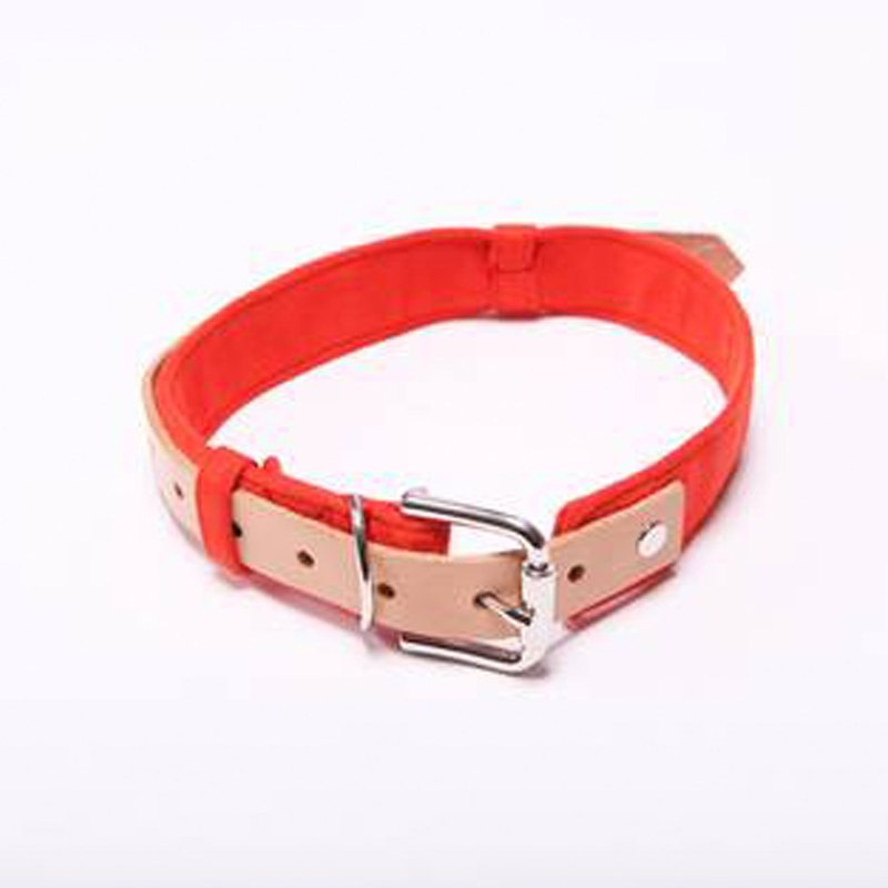Pet collar Orange Blinks orange suede fight leather S / M / L
