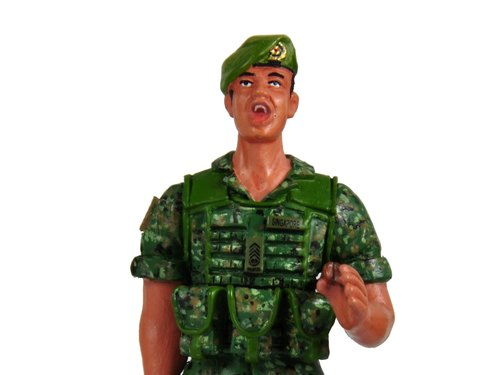 Collectible Soldier Figurine Regimental Sergeant Major (Chinese)