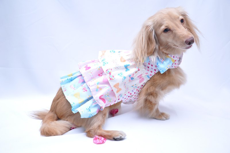 Among dog harness chillike dress