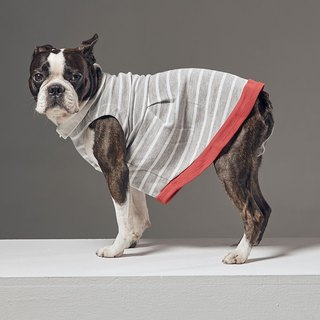Retro small round neck stripe stitching pet clothes - wide version