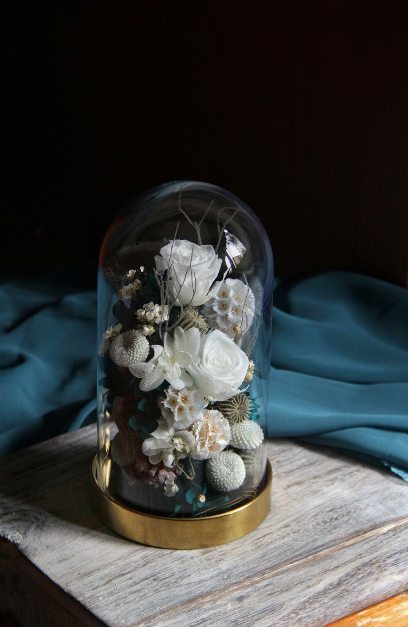 ELEVEN Preserved Roses and dry flowers glass bell jar