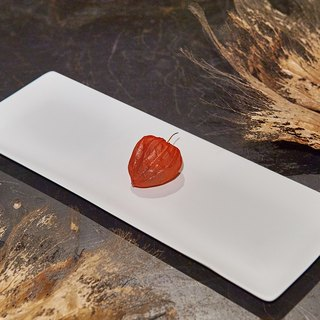 [3, co] ocean rectangular plate (medium) - white