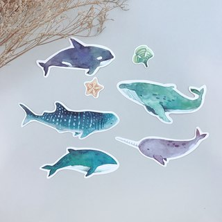 Marine whale sticker