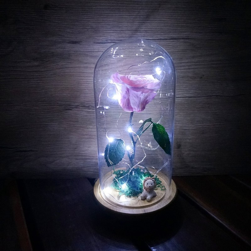 """Pre-order"" beauty and beast series night light models"