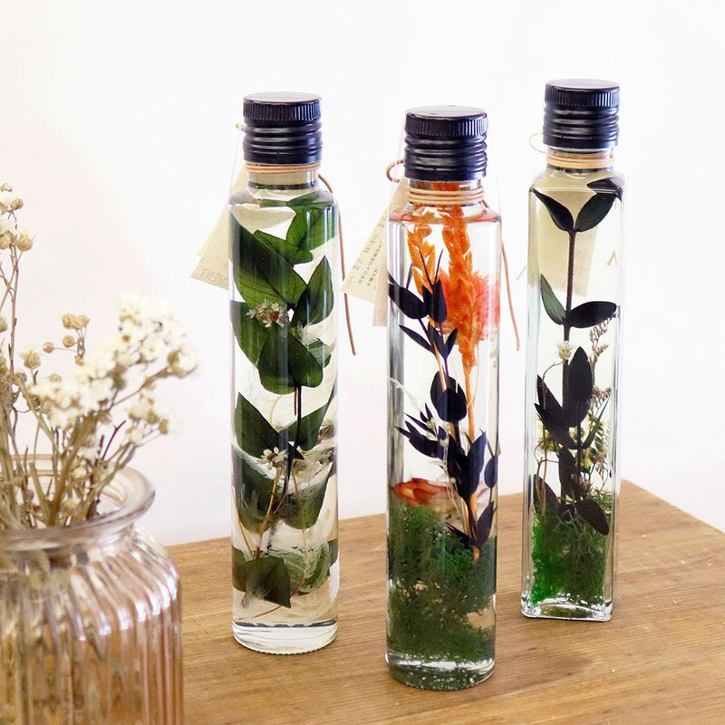[Limited during the period] The gift of the forest __Botanical floating vase / black cover square bottle round bottle
