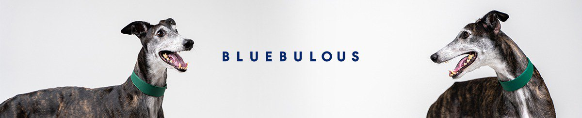 Designer Brands - Bluebulous
